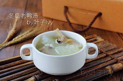 广东靓汤冬瓜老鸭汤