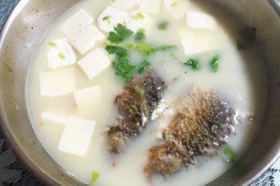 百分百奶白河鲫鱼豆腐