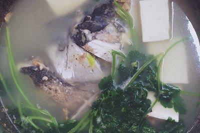 正宗芫茜豆腐鱼头汤
