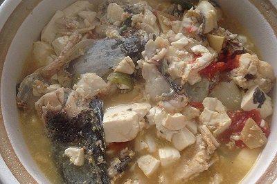 财鱼豆腐汤